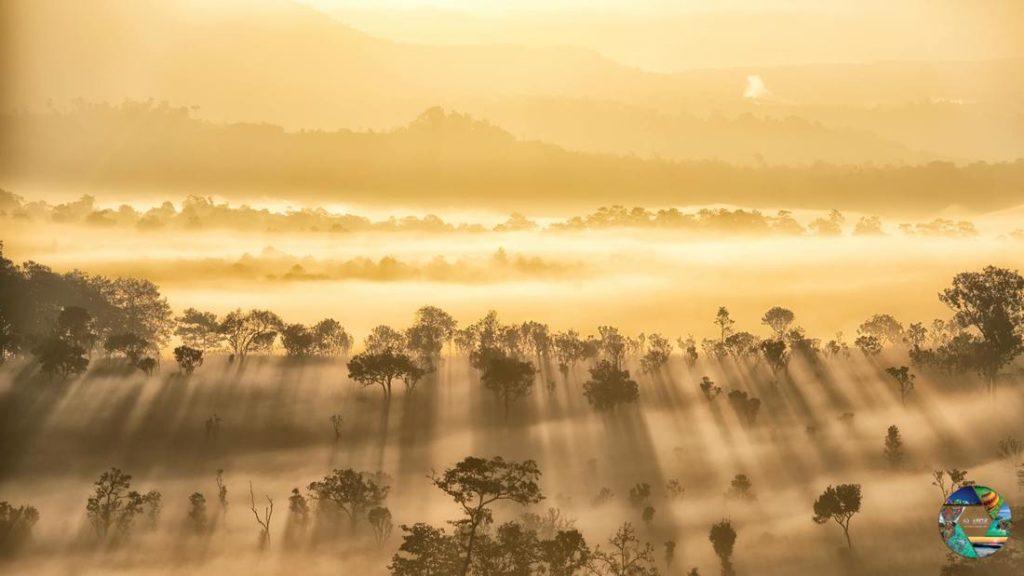 """รางวัลชนะเลิศ โครงการประกวดภาพถ่าย หัวข้อ """"มหัศจรรย์เมืองไทย เก๋ไก๋ทุกมุมมอง"""" ภาพที่ 1 สถานที่ : อุทยานแห่งชาติทุ่งแสลงหลวงจ.พิษณุโลก นายวโรตม์ เอี้ยวถาวร"""